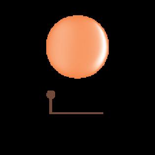 Цветной гель 4D - декоративный физалис 11